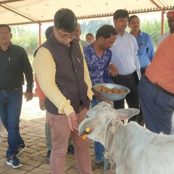 बस्ती : डीएम आशुतोष निरंजन ने किया गोशाला का निरीक्षण; खुला पशु छोड़ने पर होगी कार्रवाई