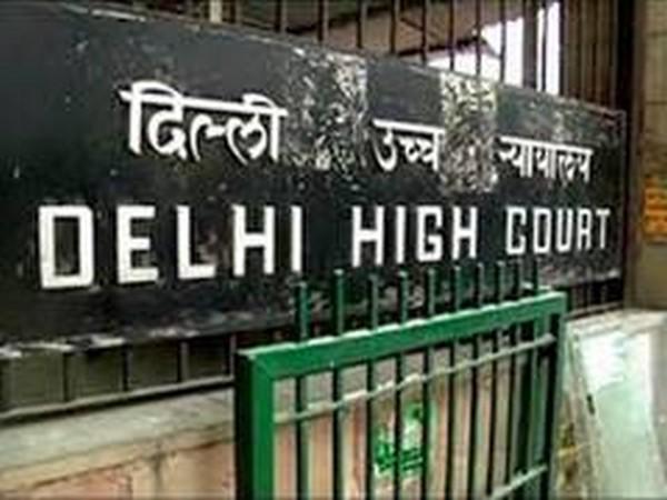 दिल्ली हिंसा पर HC से बोली पुलिस: भड़काऊ भाषण देने वालों पर केस दर्ज करने का अभी सही समय नहीं
