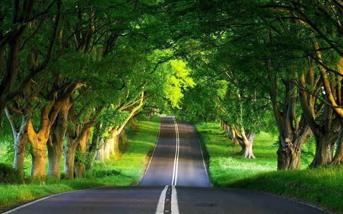 लॉकडाउन ने सुधार दी उत्तर प्रदेश के पर्यावरण की सेहत