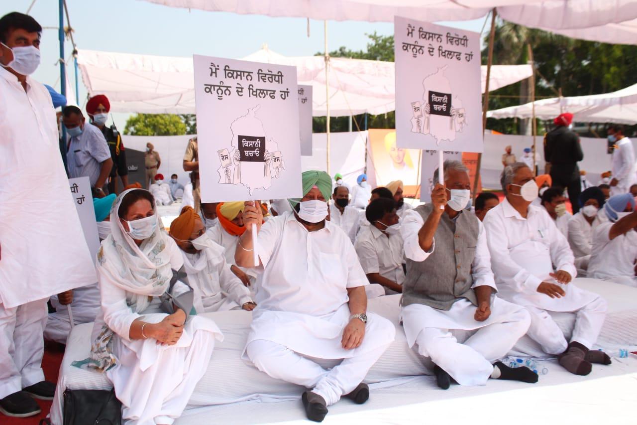 कृषि बिलों को राष्ट्रपति की मंज़ूरी मिलने के बाद विरोध तेज़, पंजाब के सीएम धरने पर, कर्नाटक में बंद